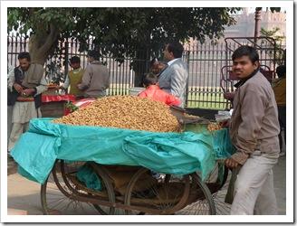 Delhi (25)